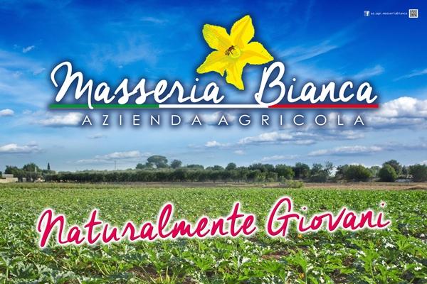 Masseria Bianca